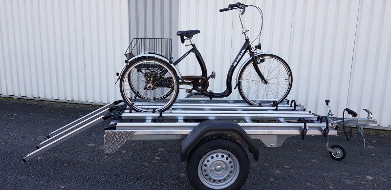 Anhaenger für Dreirad